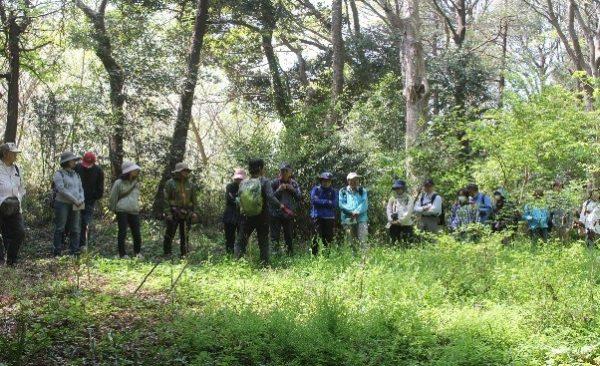 落葉樹林再生地で講師から説明