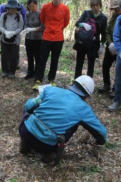 久田緑地くらぶ から竹の子の掘り方解説