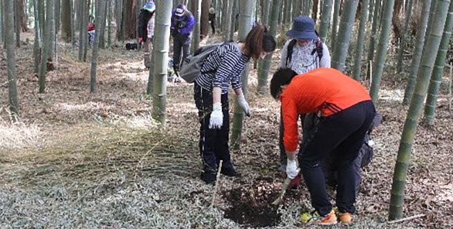 竹の子掘りで竹林整備2019