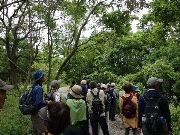三川公園での野鳥観察