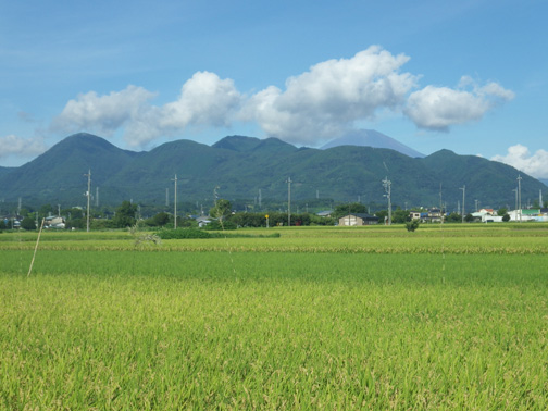 台風15号の影響もなく、朝から抜けるような青空のもとでの活動となった