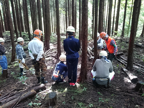 森林インストラクターから間伐方法の説明を受けます