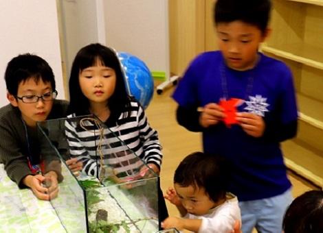 動くカニは子どもたちに人気でした