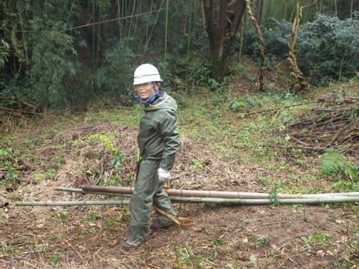 伐採された竹をロープを使って運搬