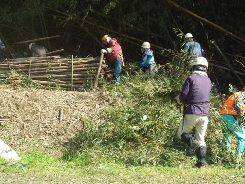 田んぼに伐採した竹を運び入れます