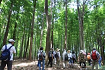 久田緑地でボランティア活動への参加