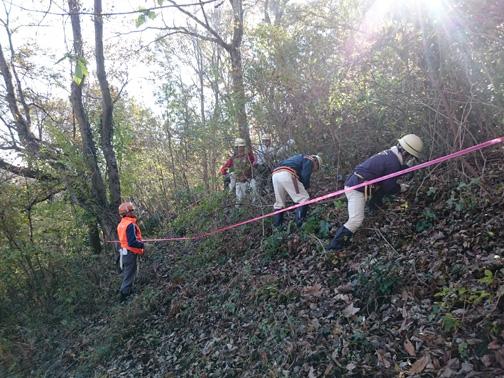 山頂の真下で作業開始。藪を空けて山頂周辺の景観を良くします