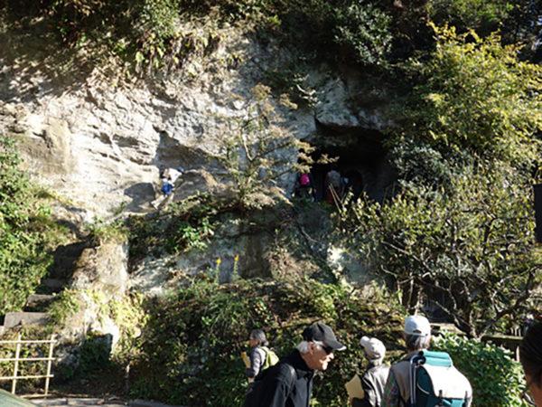 古都鎌倉 秋の緑と歴史の自然探訪