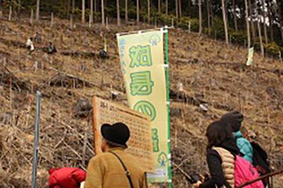 成長の森事業