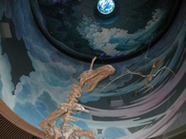 県立生命の星・地球博物館