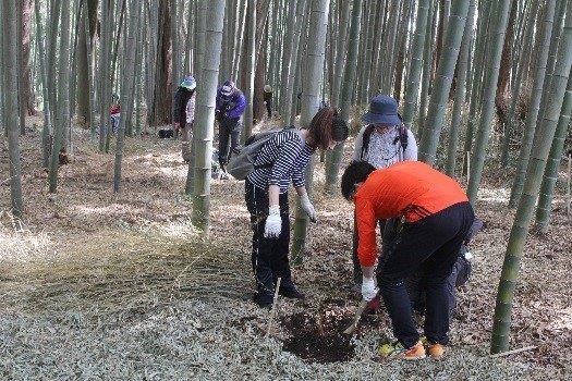 2竹の子堀