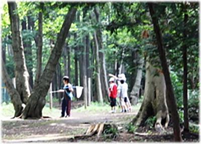 桜ケ丘緑地