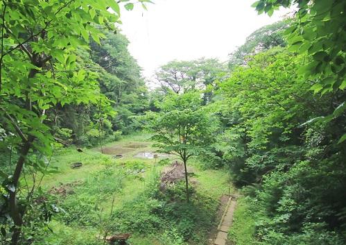 桜ヶ丘緑地