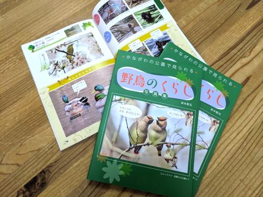 書籍野鳥のくらし写真集